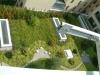 Údržba střešní zahrady